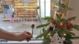LandWorks' miniature Christmas tree