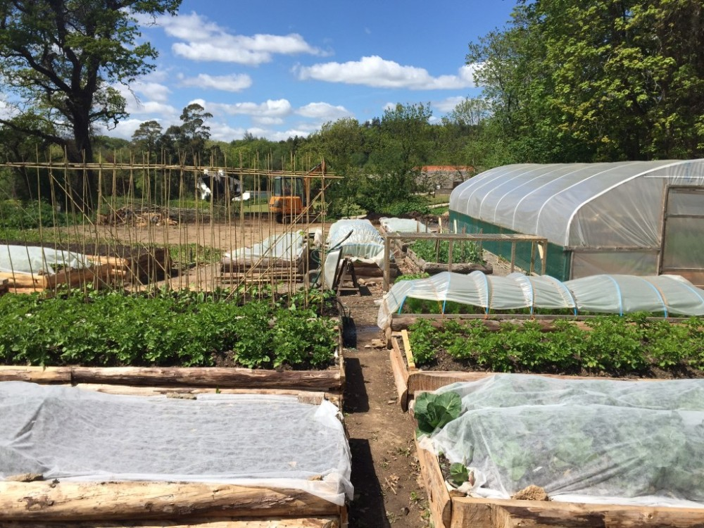 The expanding market garden at LandWorks