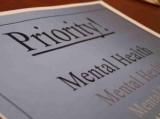 Mental health paper