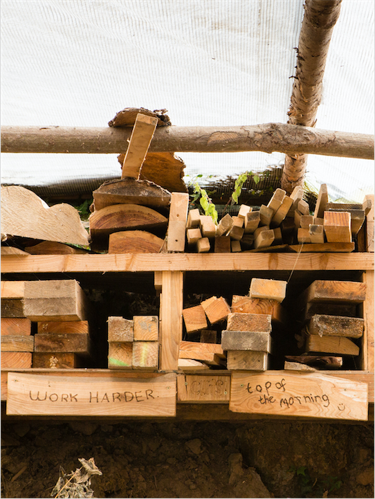 LandWorks quotes burnt into wood. Photo Credit: Recourse Magazine